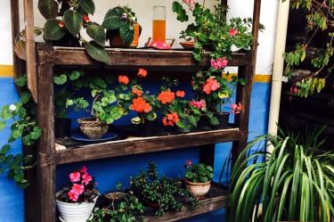 Salento's Garden Hostal Ciudad de Segorbe