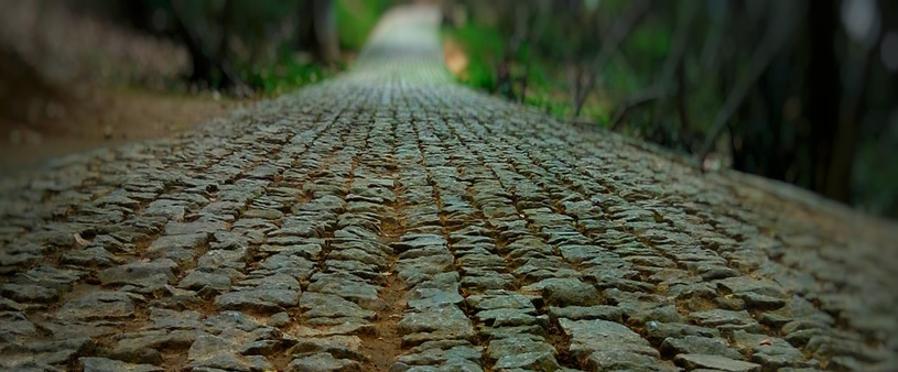 Camino Nacional